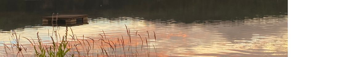 Lake Raponda Association